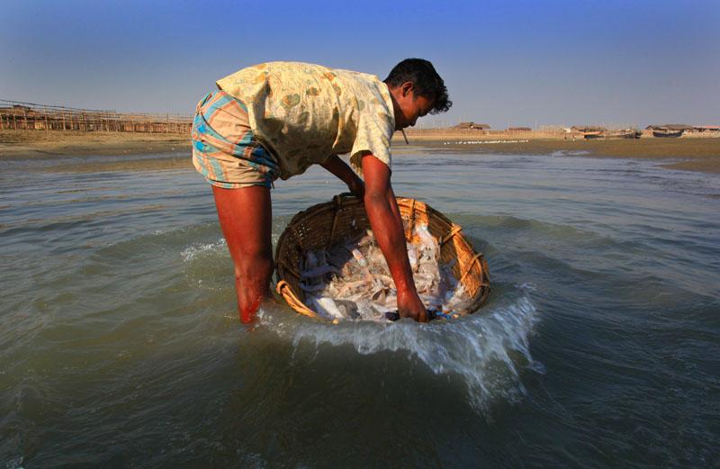 Life of Fisherman ‹ M H Rana